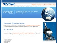Pico Net Consulting